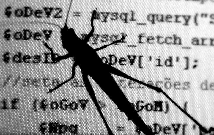 El término bug en informática